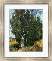 The Cypresses Fine Art Print