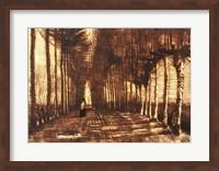 Figure on a Road, 1884 Fine Art Print