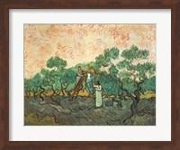 The Olive Pickers Fine Art Print