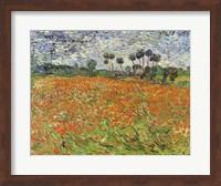 Field of Poppies Fine Art Print