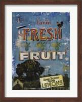 Fresh Fruit Fine Art Print