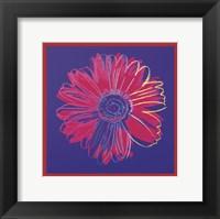 Daisy, c.1982 (blue & red) Fine Art Print