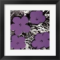 Flowers, c.1965 (4 purple) Fine Art Print