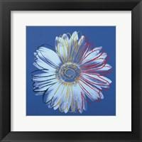 Daisy, c.1982 (blue on blue) Fine Art Print