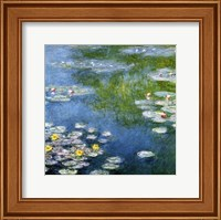 Nympheas at Giverny Fine Art Print