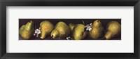 Pears in a Row Fine Art Print