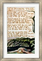 A Poison Tree, from Songs of Experience Fine Art Print