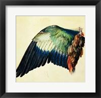 Wing of a Blue Roller, 1512 Fine Art Print