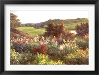 Vista II Fine Art Print