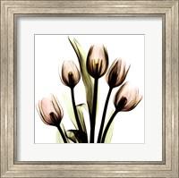 Crystal Flowers X-Ray, Tulip Bouquet Fine Art Print