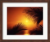 Kihei Maui Hawaii USA Fine Art Print
