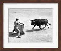 High angle view of a bullfighter with a bull in a bullring, Madrid, Spain Fine Art Print
