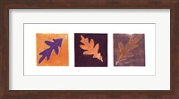 Leaf Impressions/Oak Fine Art Print
