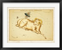 Aires and Musca Borealis Constellation Fine Art Print