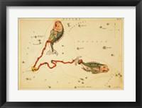 Pisces Zodiac Sign Fine Art Print