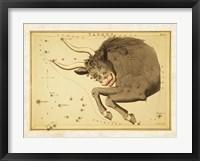 Taurus Zodiac Sign Fine Art Print