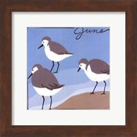 Avian June Fine Art Print