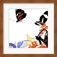 Butterfly Infloresence IV Fine Art Print