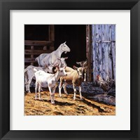 Billy and the Kids Fine Art Print