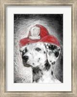 Firefighter Dalmation Fine Art Print