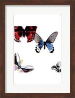 Butterflies Dance I Fine Art Print