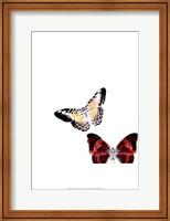 Butterflies Dance V Fine Art Print
