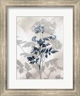 Indigo Bloom II Fine Art Print