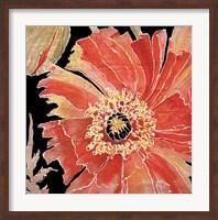 Oreintal Poppy Fine Art Print