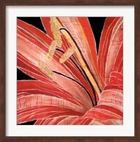 Red Amaryllis Fine Art Print
