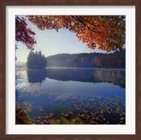 Bass Lake in Autumn I Fine Art Print