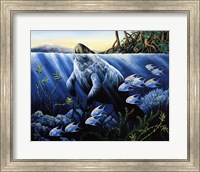 Surfacing Manatee Fine Art Print