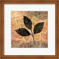 Antiqued Leaves I Fine Art Print