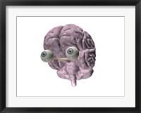 Close-up of a human brain with eye balls Fine Art Print