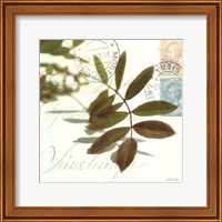 Trailing Leaf Fine Art Print
