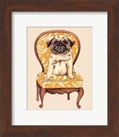 Pampered Pet I Fine Art Print