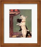 Terrier Trouble V Fine Art Print