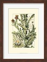 Wildflower Field IV Fine Art Print