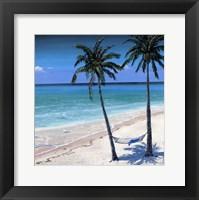 Palm island I Fine Art Print