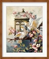 Cockatoo and Blossoms Fine Art Print