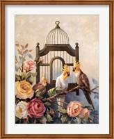 Cockatiel and Roses Fine Art Print