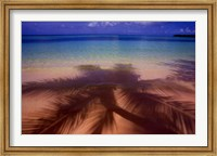 Palm Shadow Paradise Fine Art Print