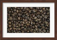 Close-up of coffee beans Fine Art Print