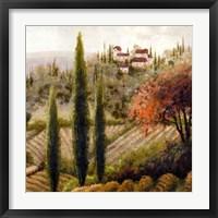 Tuscany Vineyard II Fine Art Print