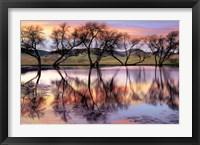 Lake Reflection Fine Art Print