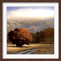 Potrero Meadow Fine Art Print