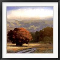 Potrero Meadow Fine Art Print