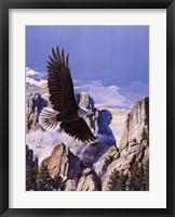 (Freedom) Eagle in Flight Fine Art Print