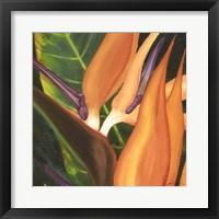 Bird Of Paradise Tile I Fine Art Print