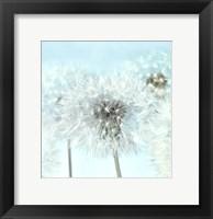 Dandelion I Fine Art Print