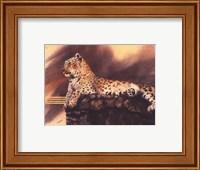 Lounging Leopard Fine Art Print